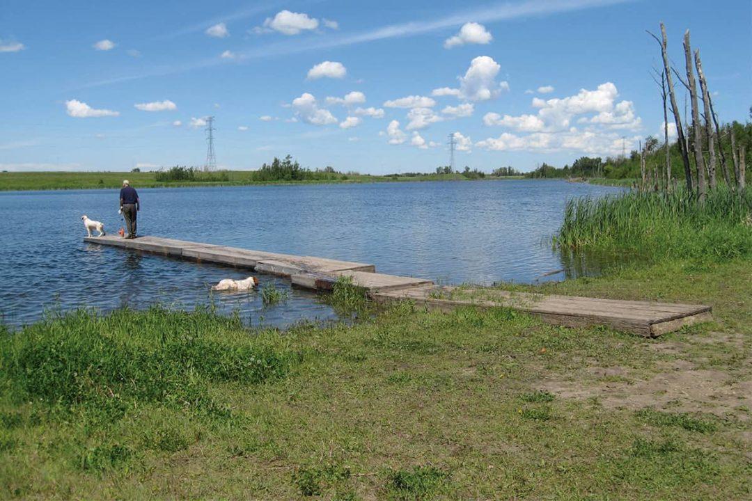 Kirk Lake next to Mooncrest Neighbourhood