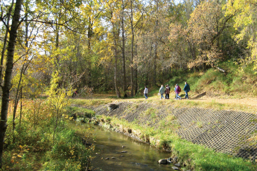Mill Creek Ravine North